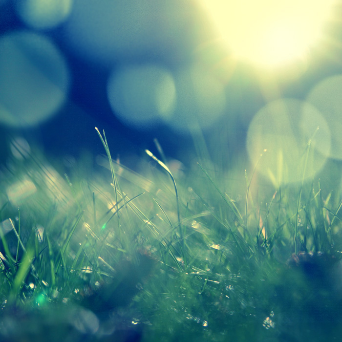 Another_sunny_day_by_Barbroute